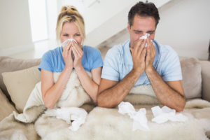Are Mold Spores in the Air of Your Home?